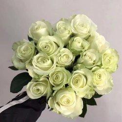 ورود بالجملة سعرات طازجة يقطع زهرة هبة ل عرس عيد ميلاد المسيح ديكورات