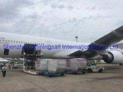 DHL Express Shipping Логистических услуг - от Китая до Аргентины, Колумбии, Чили и других странах Южной Америки/транспорт/экспедитора/грузовых/