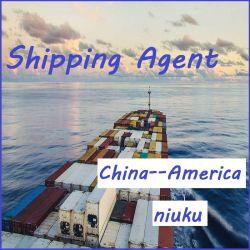 انخفاض شركة فبا للشحن أرخص سعر لباب الشحن البحري إلى أميركا