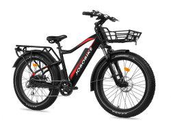 ヨーロッパの販売のためのEelctric脂肪質Eのバイク
