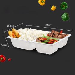 3 compartimento plástico Bento Caixa de almoço refeição Suporte Recipiente para armazenamento de alimentos descartáveis manter Caixa fresca