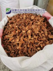 最高品質の乾燥ガルンガルルート