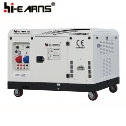 8.5 kw Groupe Électrogène Diesel / Générateur Portable de  Famille (DG12000E)