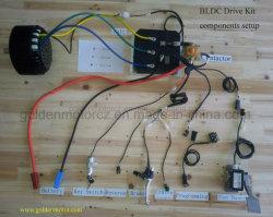 전차, 전기 기관자전차, 전기 세발자전거, 전기 골프 카트, 포크리프트, 전기 배를 위한 무브러시 DC 모터