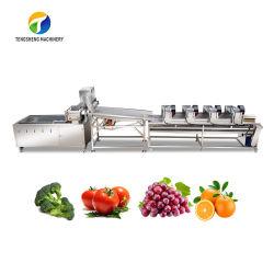 Multifunctionele voedselverwerkingsmachine voor fruit, groenten, wassen, wassen, reinigen van de koepel Productielijn voor vibratie en drogen van lucht
