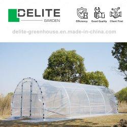 Avícola Gaiolas Camada utilizados vários gases com efeito de Home jardim paisagístico de quintal Polytunnel Casa de Aço