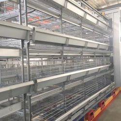 Melhor Preço Bateria de exploração da camada de aves de capoeira/Frango de corte/galinha dos ovos que Cage para venda