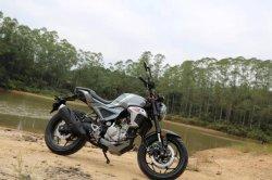 200cc охлаждающего воздуха /охлаждения воды Pocket Bike уличных мотоциклов