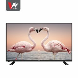 "New Arrival Home TV 43""LCD LED TV smal frame met T2/S2 digitaal systeem"