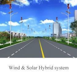 Spirale 200W petite turbine éolienne à axe vertical (SHJ-NEV200S)