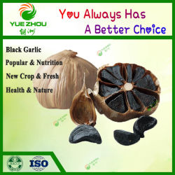 Oferta de venda quente barata alho negro com alta qualidade