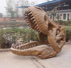 Modelo de fósiles de dinosaurios Skelenton