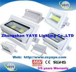 Yaye 18 Haut de vendre ce/l'approbation RoHS COB 30W / Projecteur à LED COB 30W Projecteur LED /S/N 30W Downlight Led