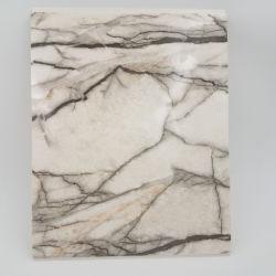 Faux pedra mármore de plástico à prova de revestimento de parede para cozinhas