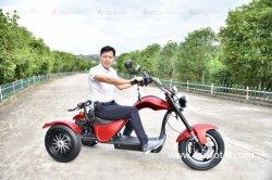 2020新しいベストセラー60V EEC電気3 3つの車輪のオートバイのTrike Citycocoの大人のスクーター