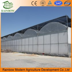 Промышленных выбросов парниковых газов туннеля для выращивания овощей и фруктов/салат