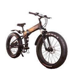 '' E-Fahrrad 26 elektrischer Fahrrad-Gebirgsradfahrendes Aluminiumlegierung-Ketten-Schnee-Fahrrad mit Rad-Speiche