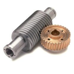 En acier inoxydable d'usinage personnalisé Micro ver la vis de pignon et arbre de pignon d'engrenage