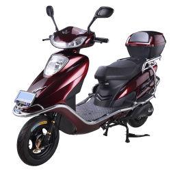 1000W moto utilizada Pocket Bike Mini Dirt Bike para la venta