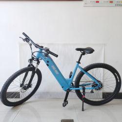36V13ahlithium力の自転車250With500Wの電気バイクのEバイクの土のバイクの電気スクーター