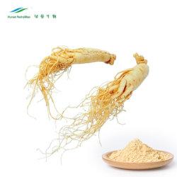 低農薬 3% 〜 80% Ginsenosides Panax Ginseng Root Extract 粉末 ( FDA および USP および EP 標準)