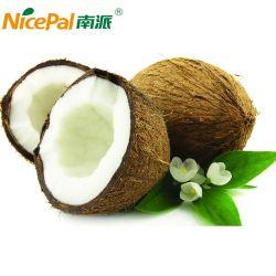 Polvere pura all'ingrosso della spremuta della noce di cocco