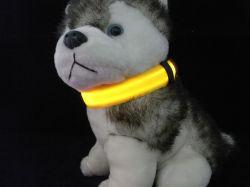 Collier pour chien Pet en nylon à LED