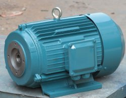 Tefc ~ IP55~ Three-Phase Oil Pump Motor