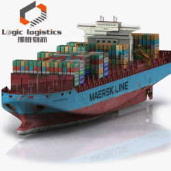 해상 운송 업체 운송 업체 중국에서 저렴한 요금 베르베라 알라 소말리아 문