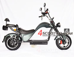 Het in het groot Beste koopt 2020 de Nieuwe Fiets Citycoco van de Autoped van China van de Bijl van de Band 2000W van de EEG van de Motorfiets Vette Volwassen Volwassen Elektrische met de Zetel van de Passagier