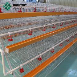 백색 PVC 공급 여물통을%s 가진 닭 층 감금소