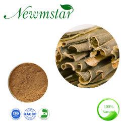 أبيض Willow استخراج الصالحية ألبا L. Salicin 15 ٪ الأصفر مسحوق السلق ألبا مقتطف