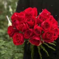 عرض روز الجديد هدية ديكورية زهرة عيد الحب المنذر اليوم 20PCS/الحزمة