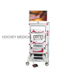 Hochey Medical سعر الجملة HD فيديو جراحة مرنة Endoscopic Gastroope معدات مستشفى كولووسكوب للأذن والحنجرة