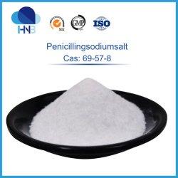 CAS antimicrobiana 69-57-8 la penicilina G de polvo de sal de sodio en polvo