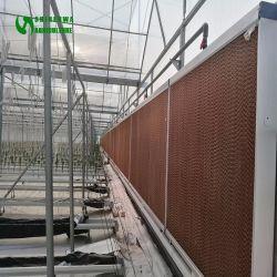 Greenhouse / Factory / ferme d'élevage en utilisant le refroidissement évaporatif Pad pour ferme avicole