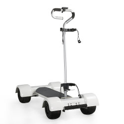 1000W 20.8ah 60V Golfboard Golf Skate eléctrico
