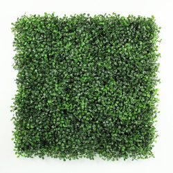 Pianta del Boxwood personalizzata materiale fresco UV del PE della prova nuovo per la decorazione interna