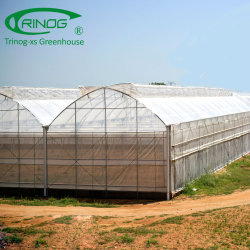 Modern multi-span tunnel filme plástico hydroponnic emissões para a agricultura
