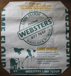 ブロックボトム PE バルブバッグウーブン PP バルブバッグペーパー 袋の Laminated 弁袋の包装袋 WPP の袋