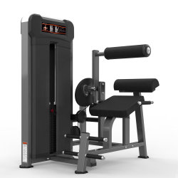 Back Extension Commercial Gym Equipment Fitness Sport(M3-1016)