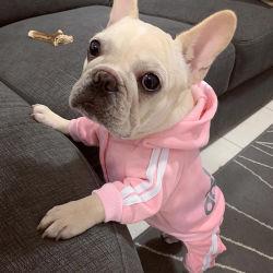 Polyester tissu Sport Chien Pet de vêtements pour les petites et moyennes chiens chiot Outfit plusieurs tailles pour chiot de poids différentes Costume