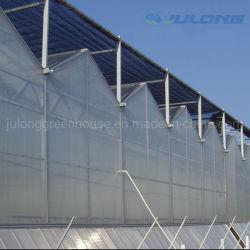 Completare i fornitori di chiave in mano di progetto della serra agricola dello strato del policarbonato