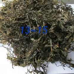 De Droge Kelp/Laminaria van de Levering van de fabriek voor de Salade van het Zeewier