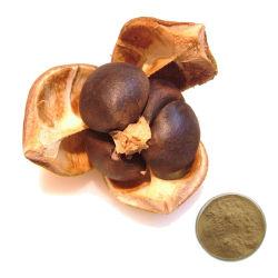 60%~98% Tee-Saponin-Kamelie-ölhaltiger Startwert- für Zufallsgeneratorauszug