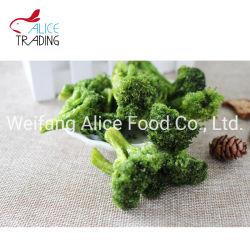 Vakuum gebratener Gemüse-Imbiß Vf Brokkoli