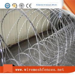 Protection anti montée faible Carbonl Razor barbelés le grillage de séparation pour le commerce de gros