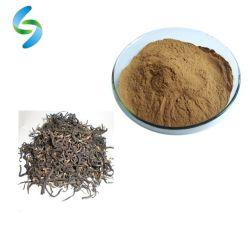 Hala certificado proveedor chino de extracto de té negro instantáneo