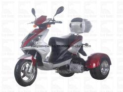 方法大人の電気レクリエーションの三輪車Trike