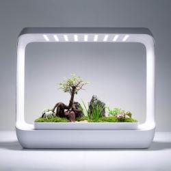 Smart Home paisagem ecológica crescimento LED Light Paisagem Micro Bonsai o crescimento vegetal LED da lâmpada de luz de enchimento